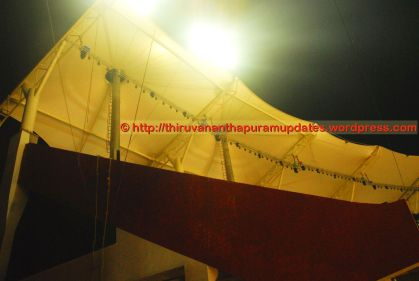View of roofing from balconey